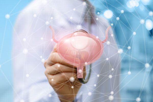 Funktionen der Prostata beim Mann